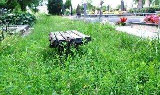 Raseinių kapinės