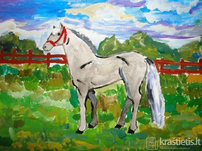 """""""Baltas arklys"""""""